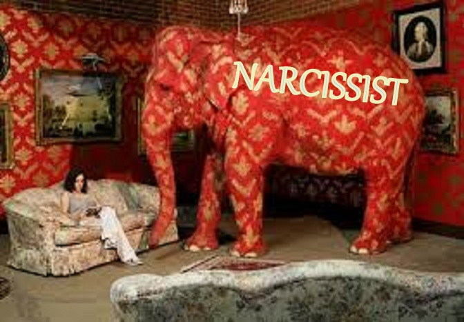 ... Elephant In The Living Room. Theres A Narcissist In The Room Part 39