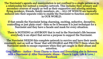 We all have an expiration date with a Narcissist  Understanding     After Narcissistic Abuse   WordPress com Minions or flying monkeys or the Narcissist     s pawns  What is behind these Narcissistic warriors that will feign over and protect the Narcissist from