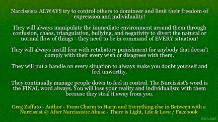 The many steps that a Narcissist uses to manage you down