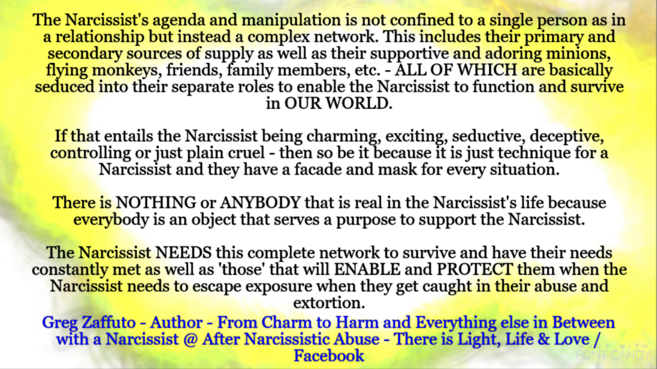 Minions or flying monkeys or the Narcissist's pawns! What is behind