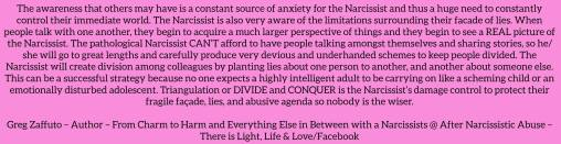 Triangulation or divide and conquer – how the Narcissist