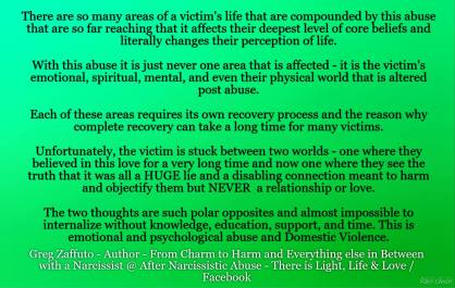 GREENmany areas of victims life affected MEME
