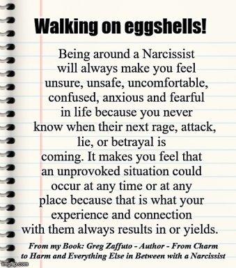 FINAL walk eggshells MEME