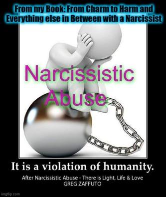 VIOLATION of Humanity Meme
